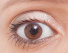 Bilberry是有助於恢復眼睛疲勞日本製造保健食品