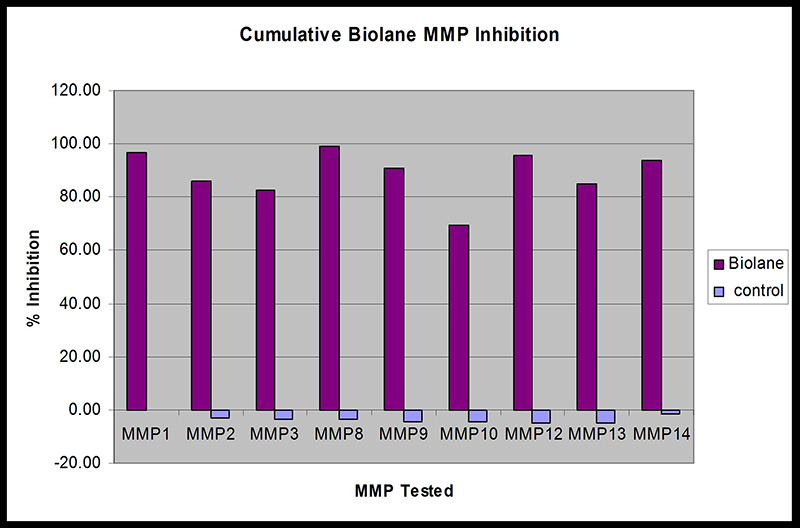 Results for MMP Inhibition