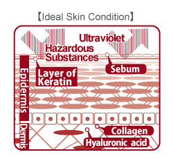 Maijun cream moisturizes your skin.