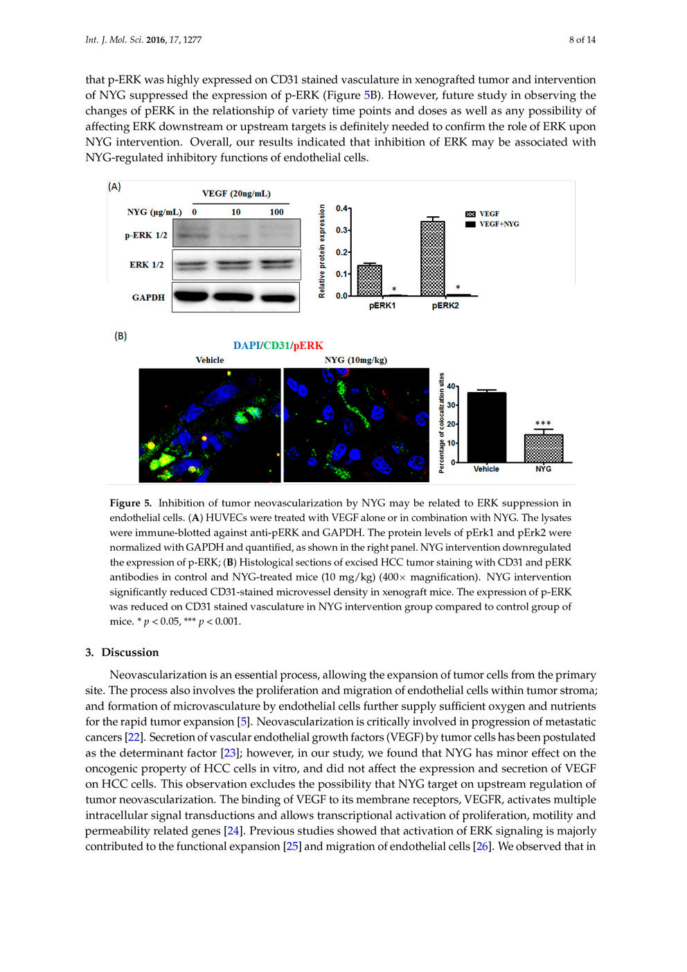 Potential of Pigment from Saw Palmetto for Adjuvant Therapy of Hepatocellular Carcinoma P8