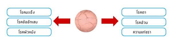 Angiogenesis (การสร้างเส้นเลือดใหม่) คืออะไร?_05
