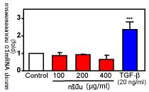 Gripin การสร้างกรดไฮยาลูโรนิกของกริปิน