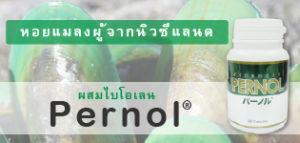 Pernol: ผสมไบโอเลน หอยแมลงผู้จากนิวซีแลนด์