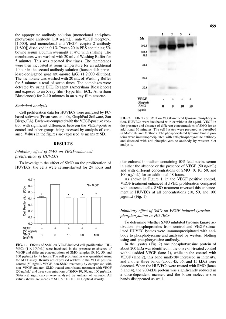 Inhibition of Tyrosine Phosphorylation of Vascular Endothelial Growth P3