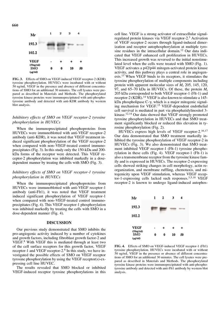 Inhibition of Tyrosine Phosphorylation of Vascular Endothelial Growth P4