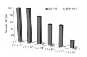 生乳由来IgG高含有濃縮乳清タンパクによるO157、サルモネラ、マック菌による感染防御
