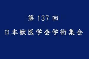 第137回 日本獣医学会学術集会で、サメ抽出脂質の抗腫瘍効果が発表されました。