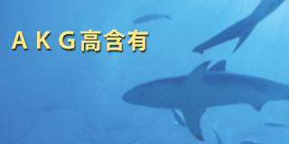 AKG含有ニュージーランド産鮫肝油 - ハイマート取り扱い原料