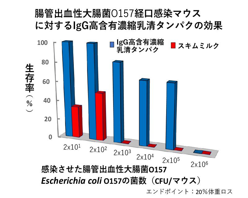 腸管出血性大腸菌O157経口感染マウスに対するIgG抗含有濃縮乳清タンパクの効果